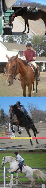 Register for Horseback Riding Lessons in Morristown NJ